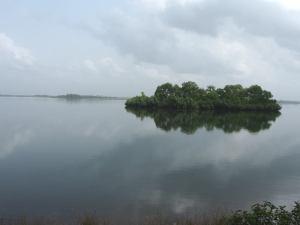 between a beautiful lake